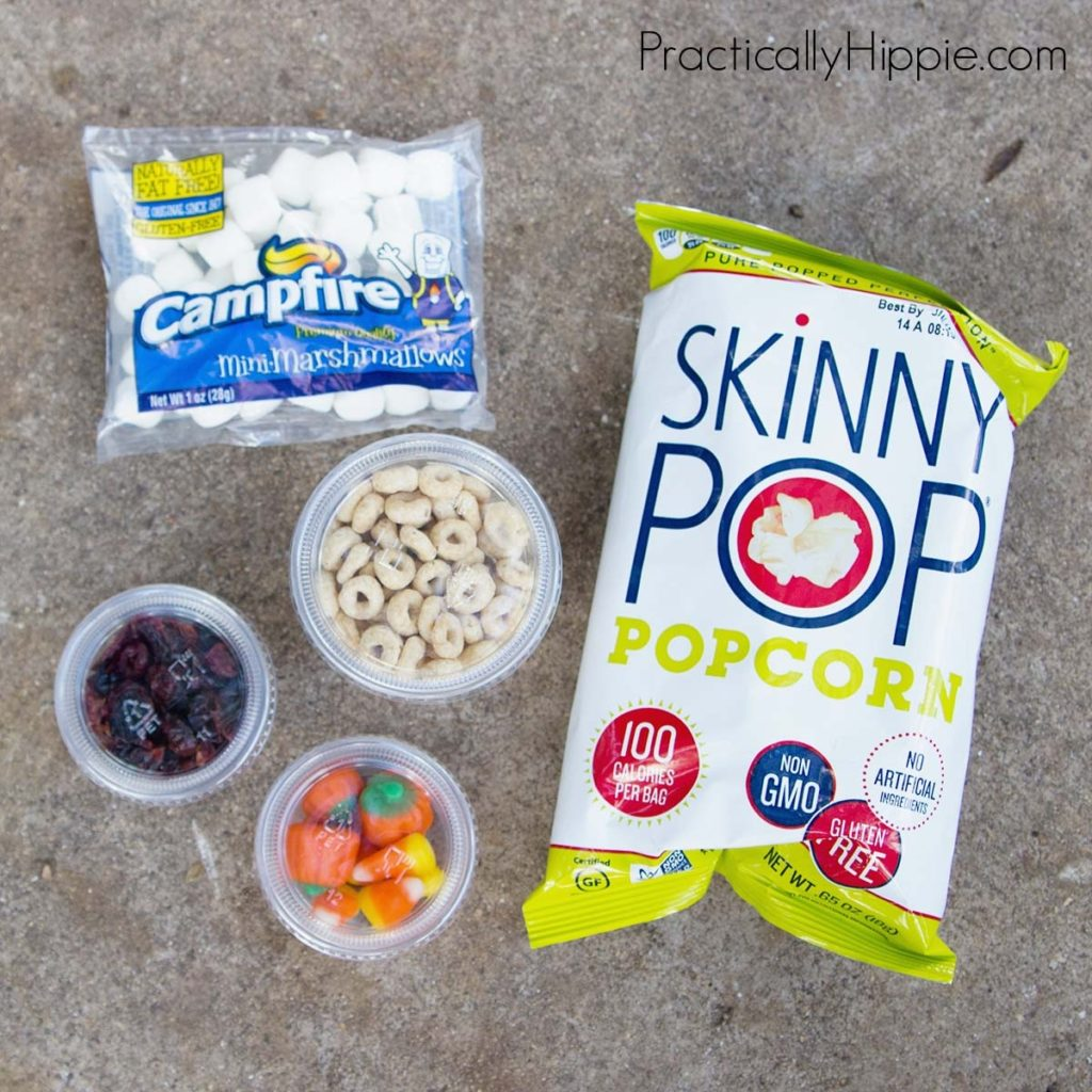 Camping with kids   DIY trail mix