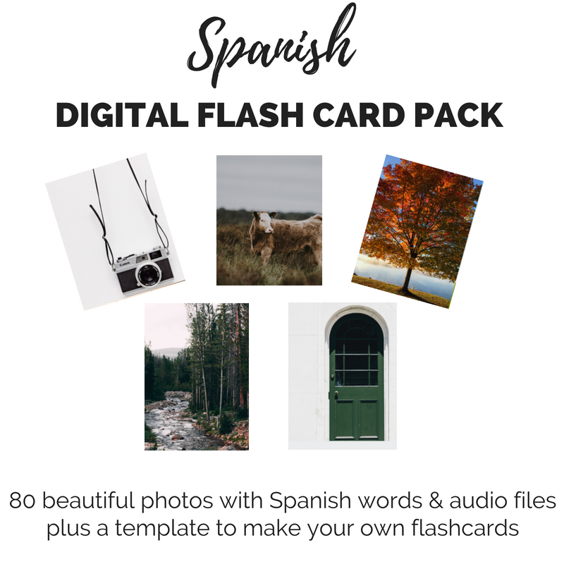 Spanish digital flash card pack
